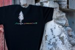 Rainbow Pine